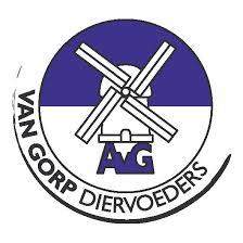 Van Gorp