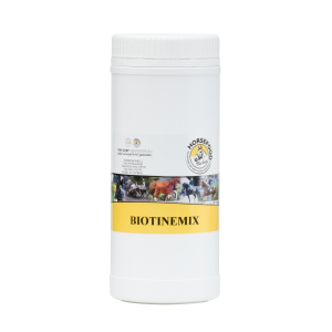 Horsefood Biotine