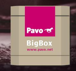 bigbox pavo